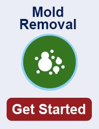 mold remediation in Los Angeles TN